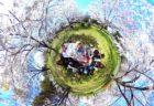 東京・足立区【お花見レイキWS】桜の精霊もやってくる!?ハートにエネルギーチャージ♡